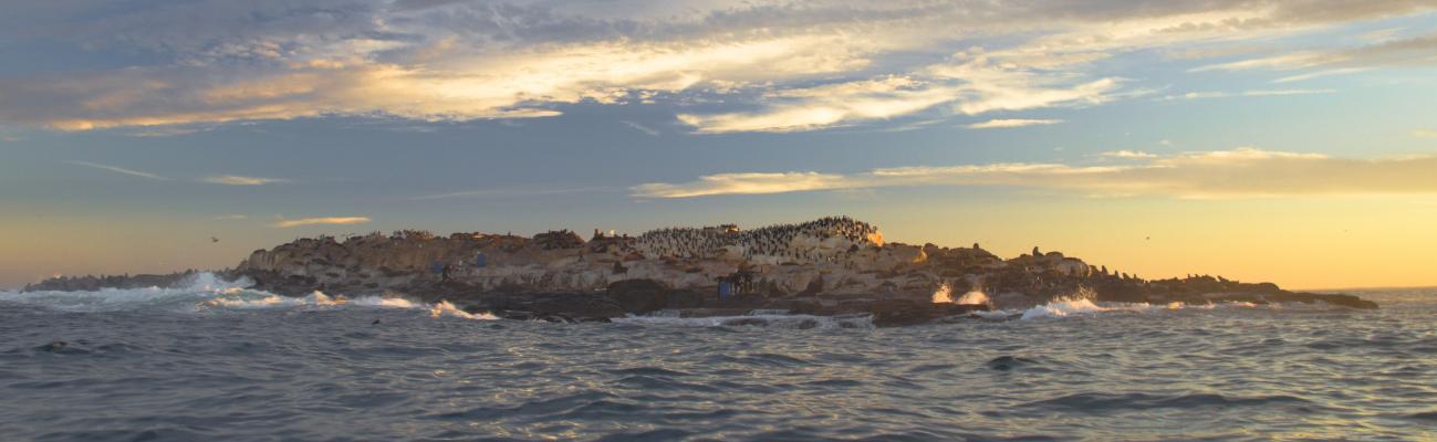Isla Escondida, SA-096